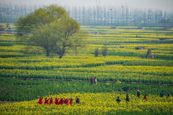 This photo taken on March 17, 2019 shows tourists visiting Qianduo rapeflower fields in Xinghua in China's eastern Jiangsu province. (Photo by STR / AFP) / China OUT