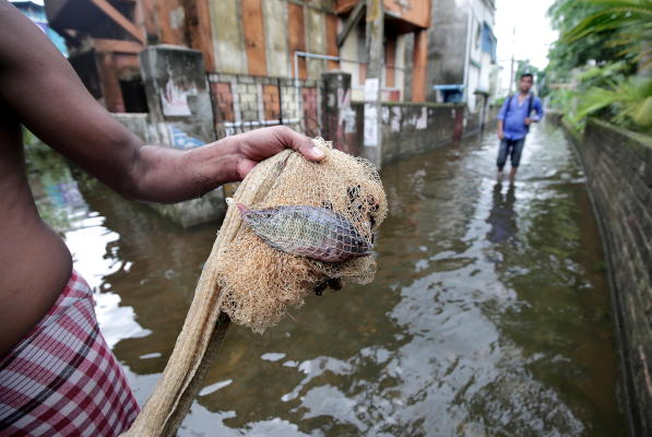 An Indian man catches fish on flooded street after heavy rain hit Rajpur village, West Bangal, India, 19 August 2019. (EPA)