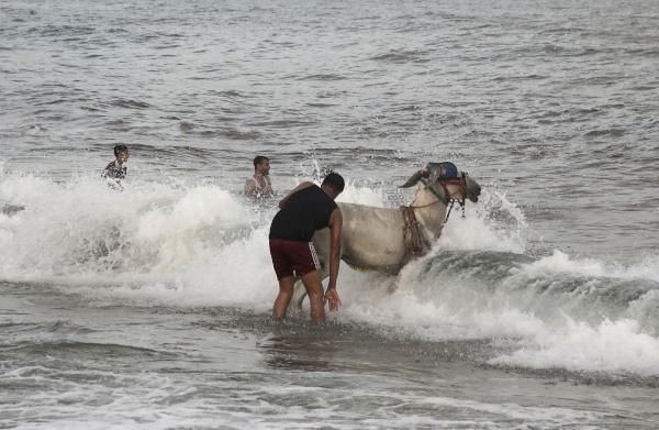 A Palestinian man washes his donkey in the Mediterranean Sea in Gaza City on August 23, 2019. (Photo by MOHAMMED ABED / AFP)
