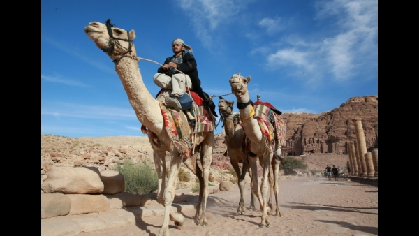 A Jordanian cameleer rides while dragging along camels to rent for tourists in the archaeological city of Petra, south of the capital Amman  AFP / AHMAD ABDO