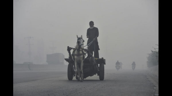 A man rides his horsecart amid heavy smog conditions in Lahore  AFP / Arif ALI