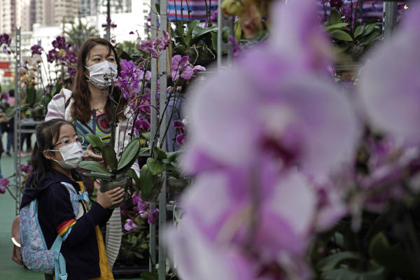 People wearing masks, purchase flowers at a New Year market in Hong Kong's Victoria Park, Friday, Jan. 24, 2020 to celebrate the Lunar New Year which marks the Year of the Rat in the Chinese zodiac. (AP Photo/Kin Cheung)