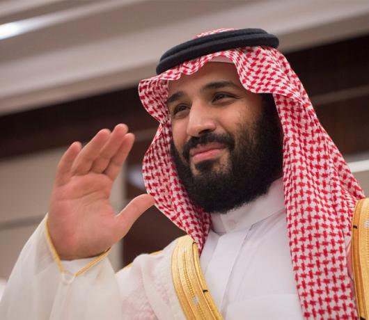 Mohammed bin Salman: A Year as Crown Prince and of Achievements