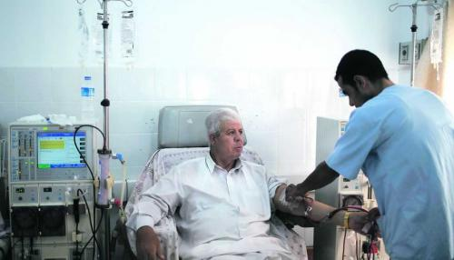 Nutrition Therapy Delays Kidney Patients' Need for Dialysis