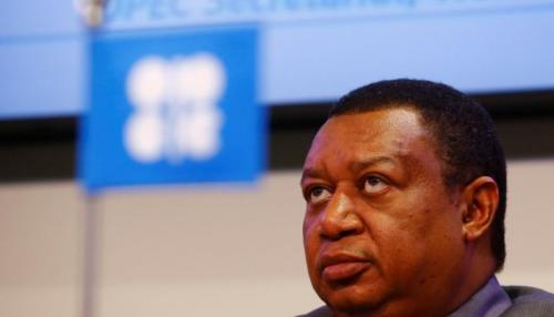 OPEC Urges Oil Producers to Increase Investment amid Shrinking Spare Oil Capacity