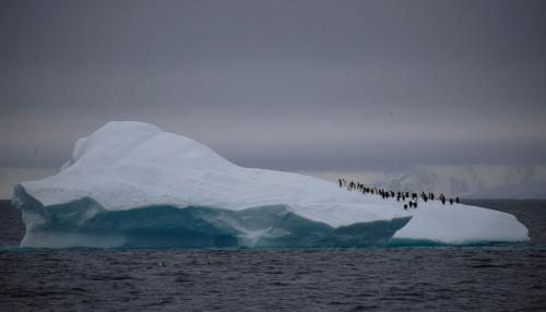 Global Warming Melts Antarctica's Ice