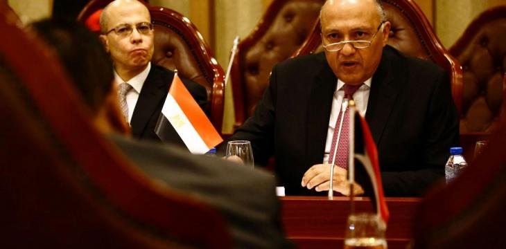 Egypt FM: We Look Forward to Counter-Terrorism Coordination with India