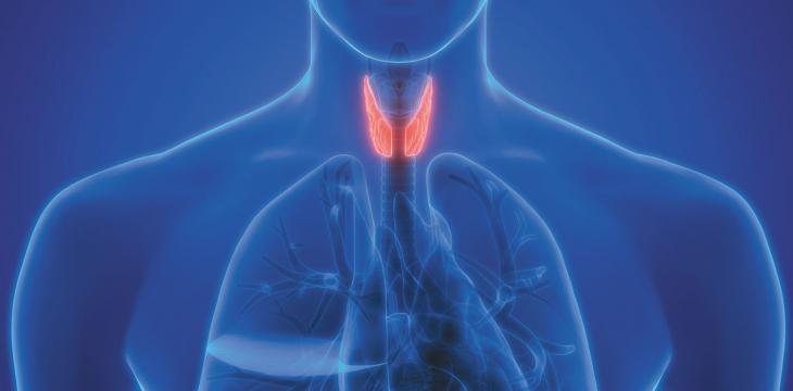 Underactive Thyroid... Tests and Treatments