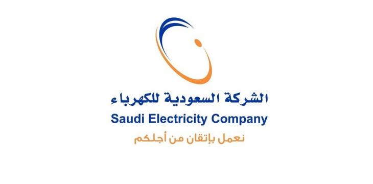 Saudi Electricity Co to Operate 11 Projects in Southern Regions