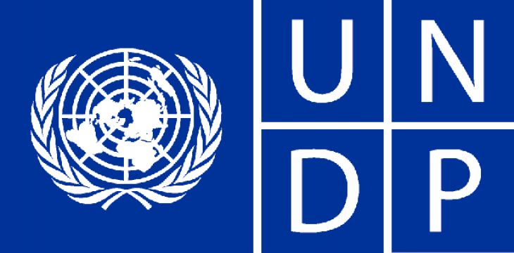 Egypt, UNDP to Boost Cooperation in Environmental Domain