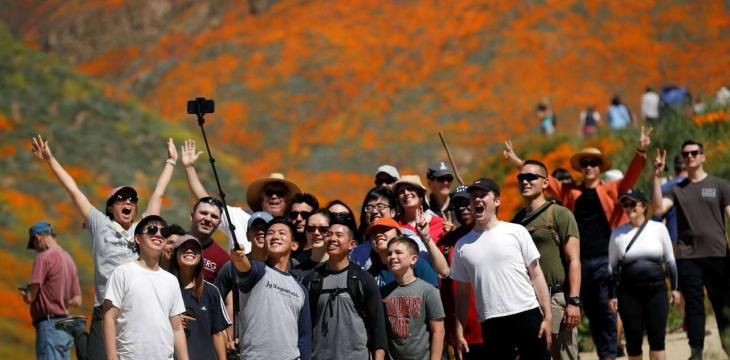 Selfie Lovers Disrupt Traffic over Super Bloom in California