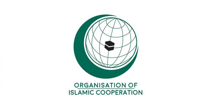 OIC Condemns Attacks in Niger, Chad