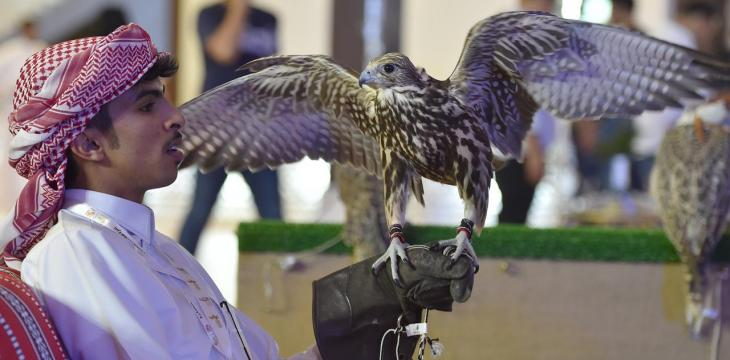 Over 70,000 Visitors Flock to 1st Day of Saudi Falcons and Hunting Show 2019