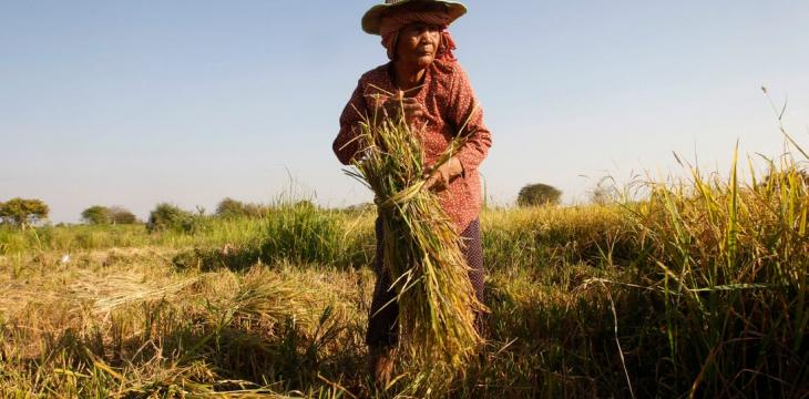 UN: Nearly a Half-Billion in Asia-Pacific Still Going Hungry