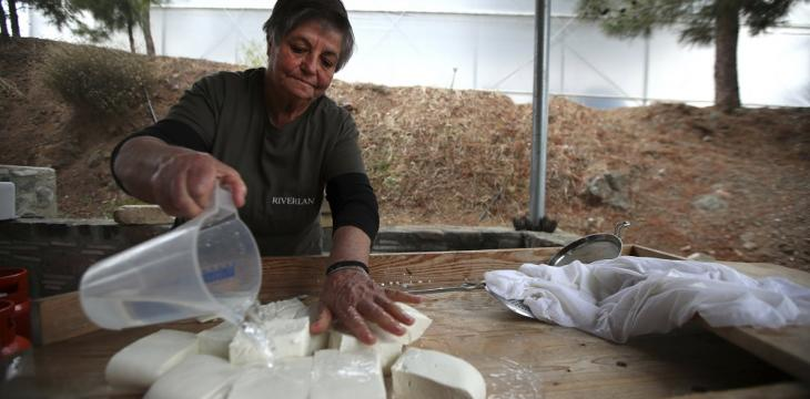 White Gold: Cyprus' Halloumi Cheese Entangled in Politics