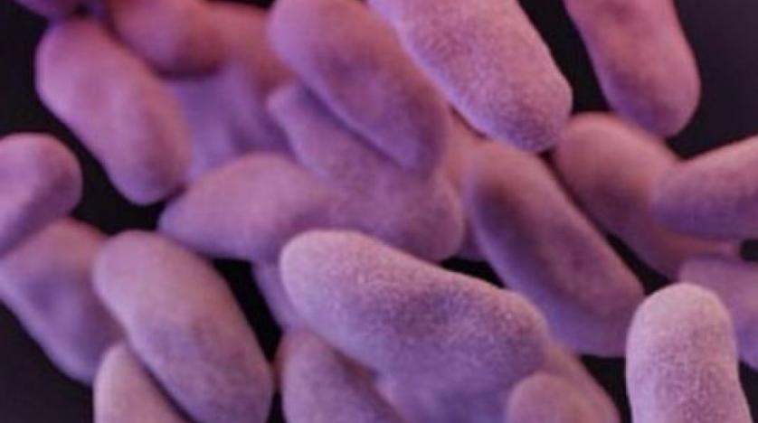 More Americans Were Killed by Superbugs than Previously thought